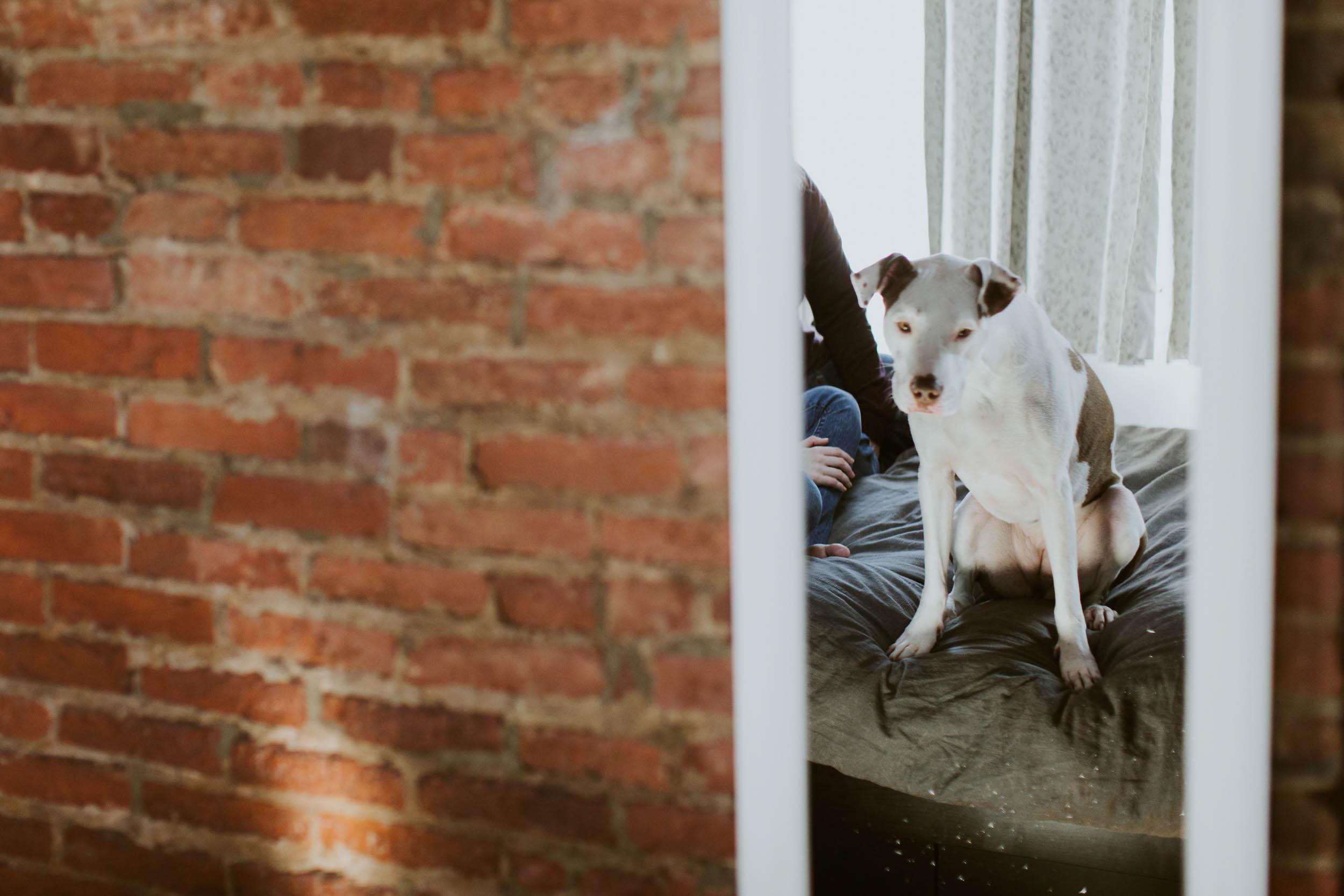 Kristen-Humbert-Family-Photoshoot-Philadelphia_Ruby-James-W-2-14.jpg