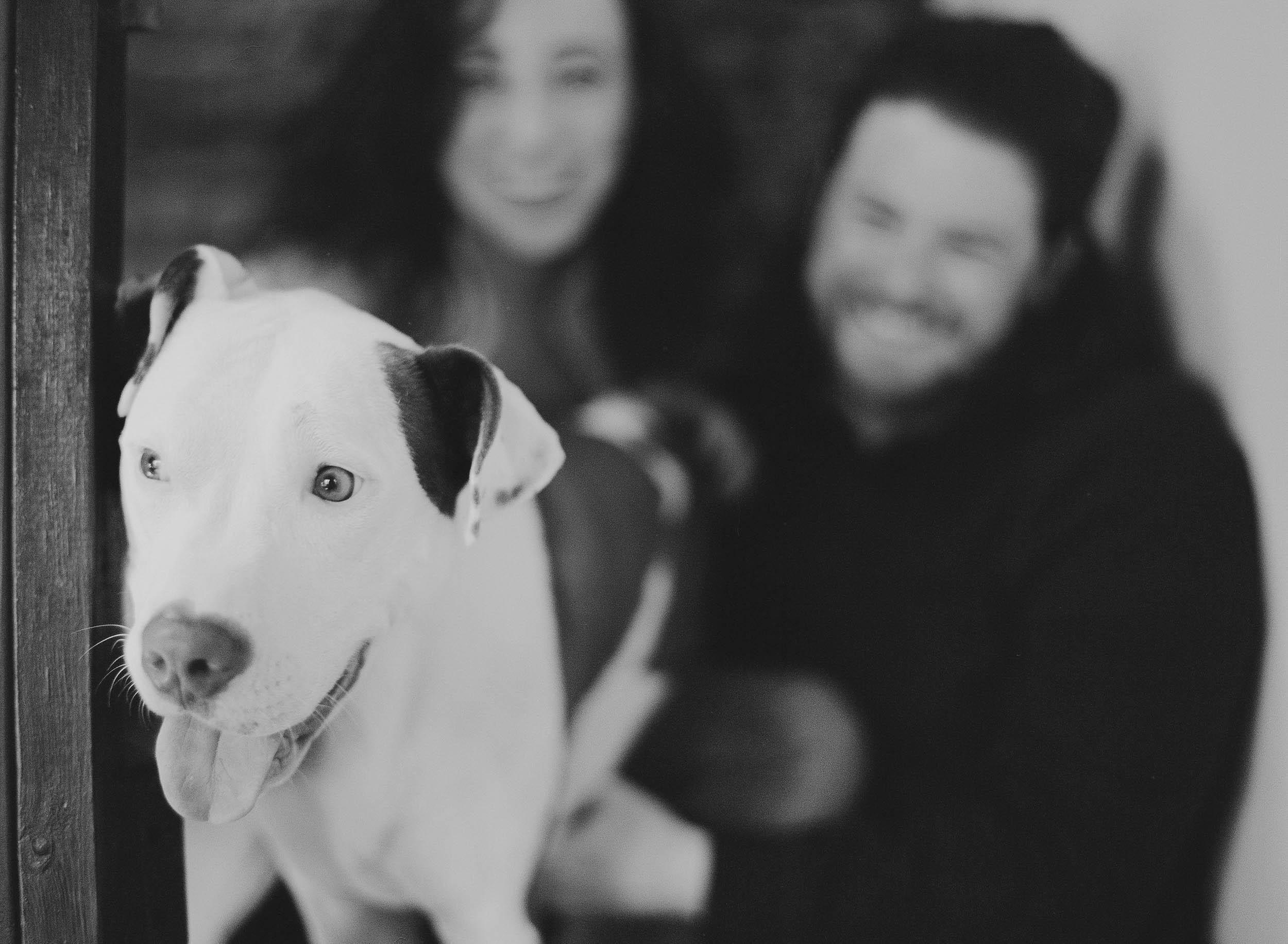 Kristen-Humbert-Family-Photoshoot-Philadelphia_Ruby-James-W-2-49.jpg