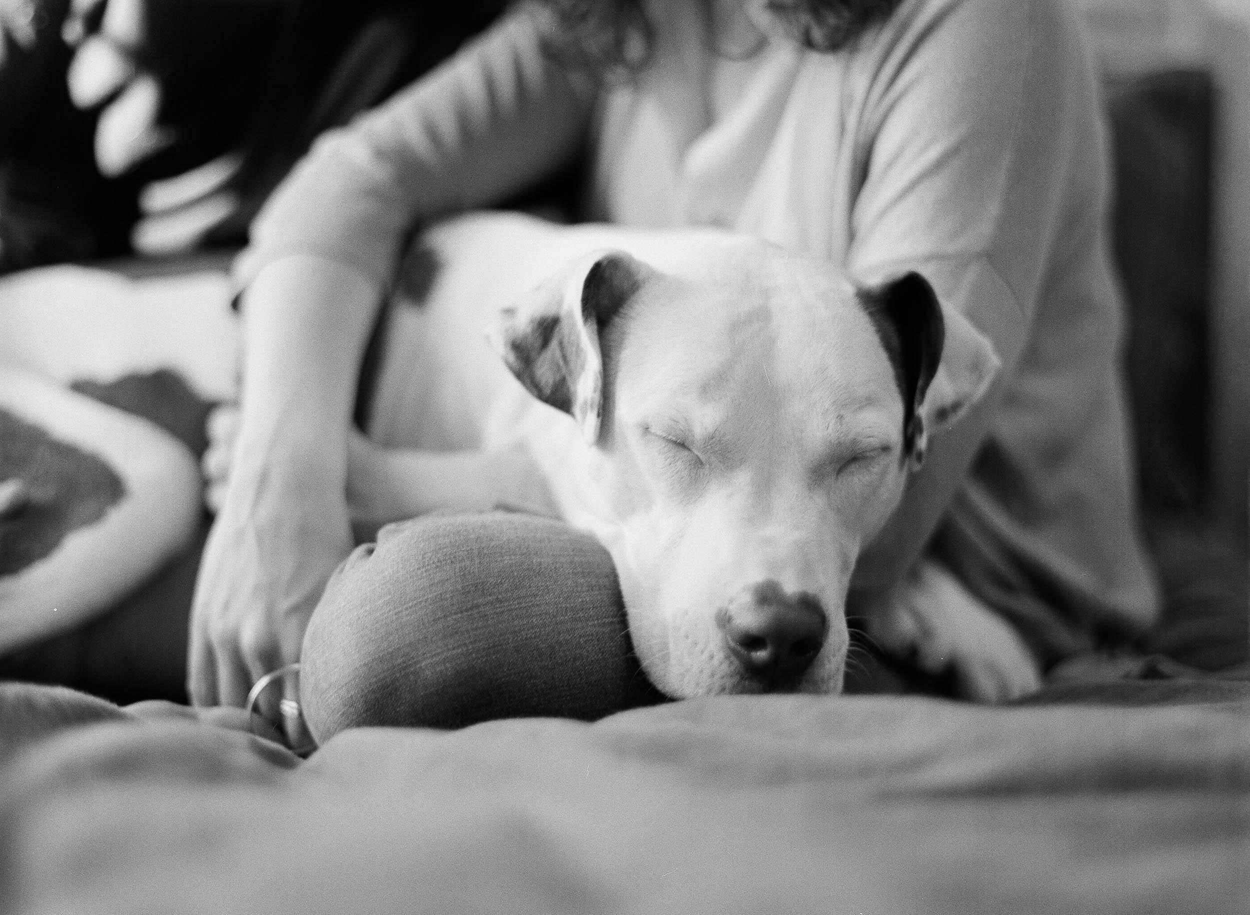 Kristen-Humbert-Family-Photoshoot-Philadelphia_Ruby-James-W-2-62.jpg