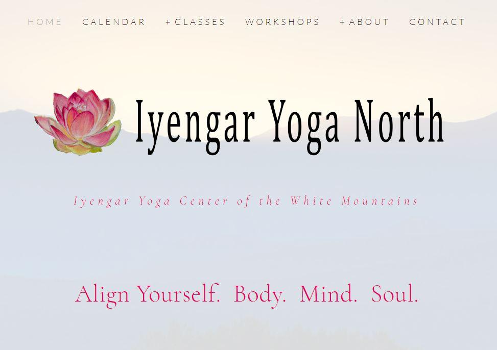 Iyengar Yoga North - Website DesignLogoNameBrandingAll PhotographyContentOld site transition & cut-overDomain, Google business page, SEO, newsletter, gmail, online commerce, postcards, flyers