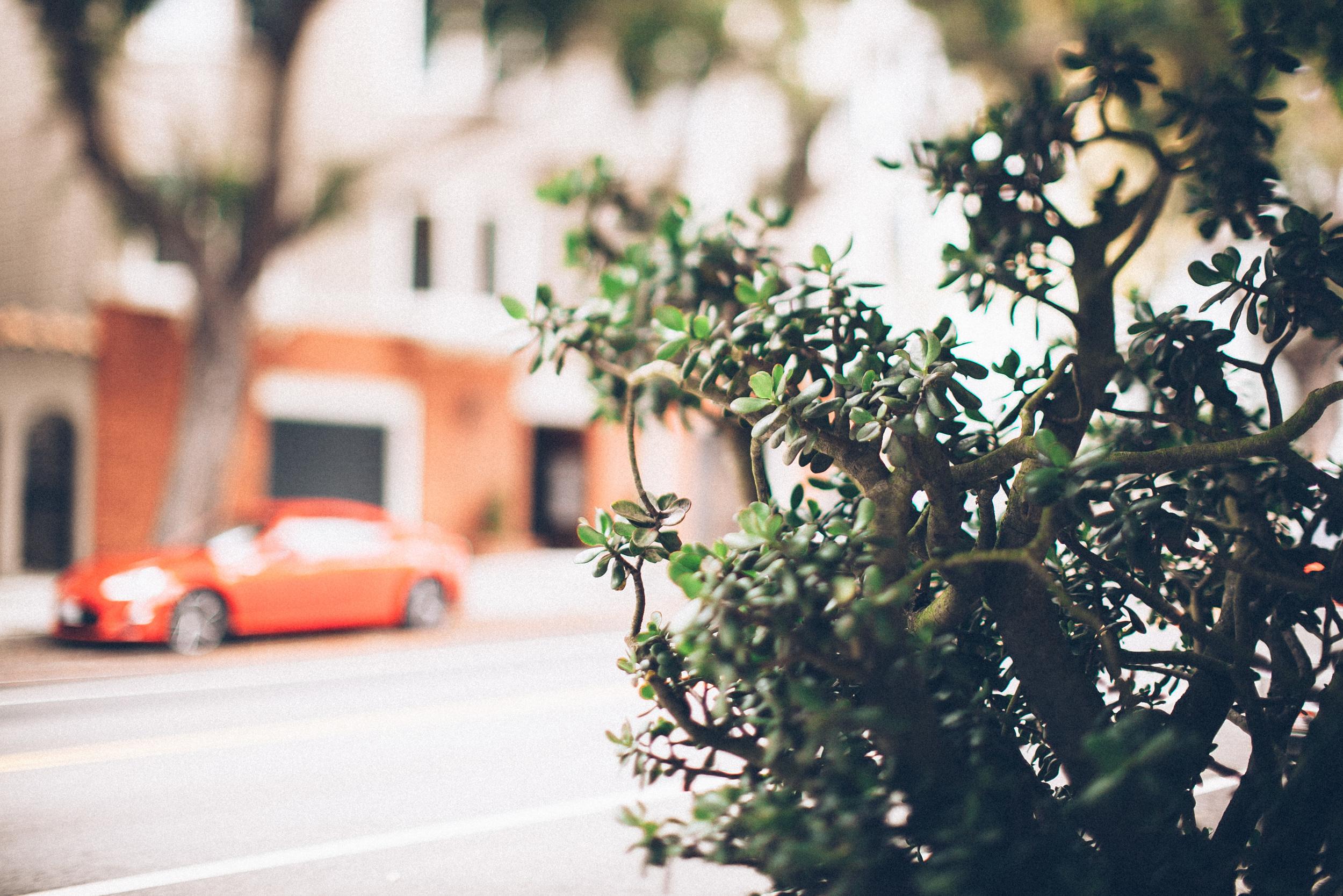 sanfrancisco-0982.jpg