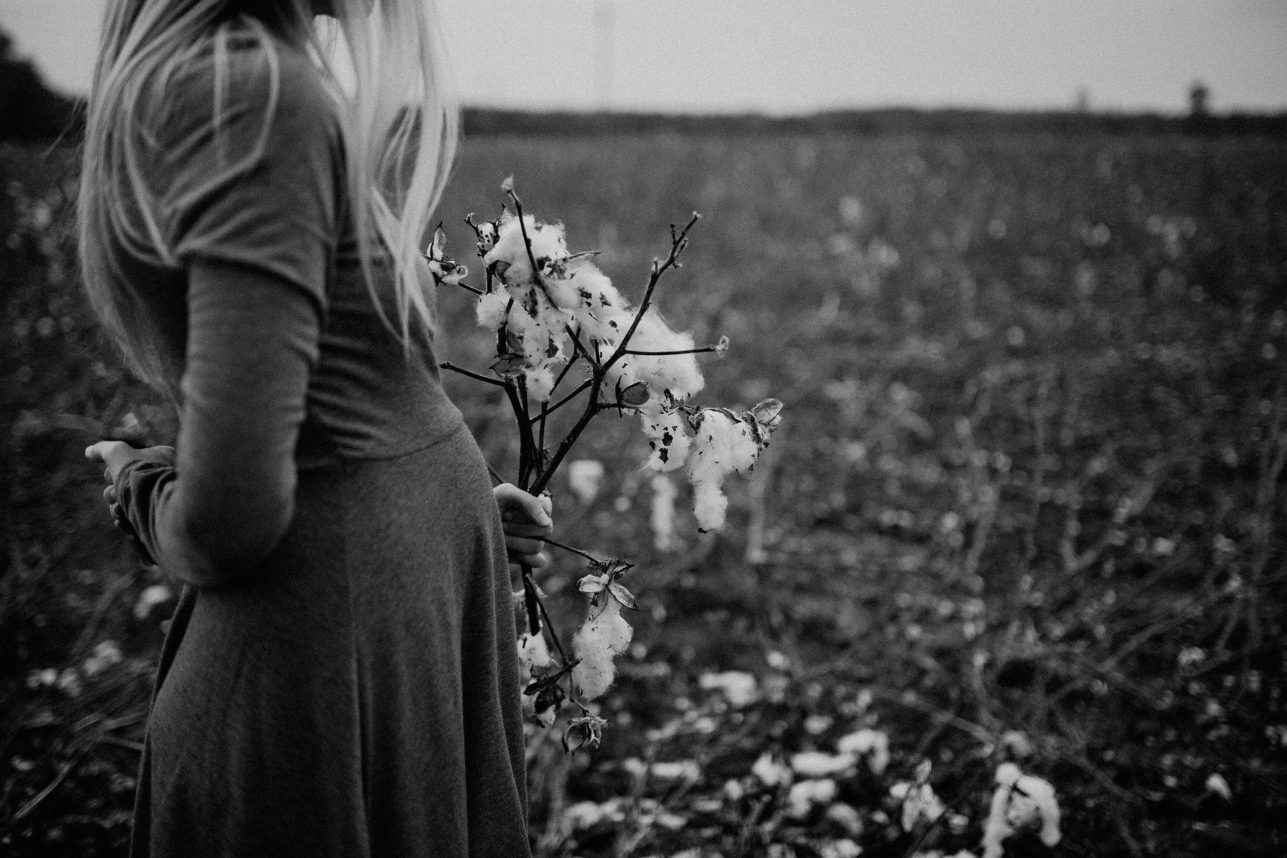 maddie-cotton-field-0770-2.jpg