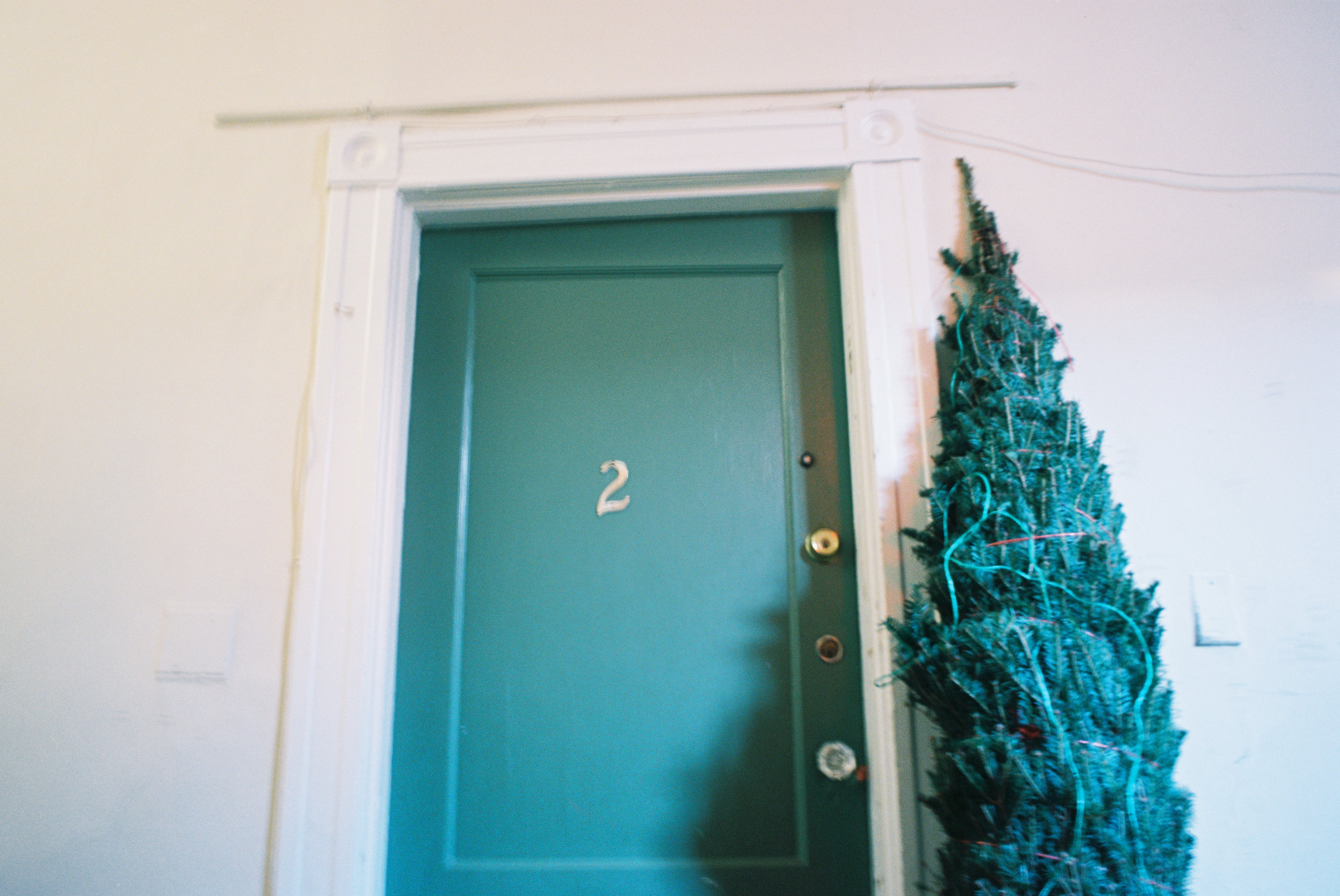 My first Christmas tree shot with agfa vista 200 35mm film