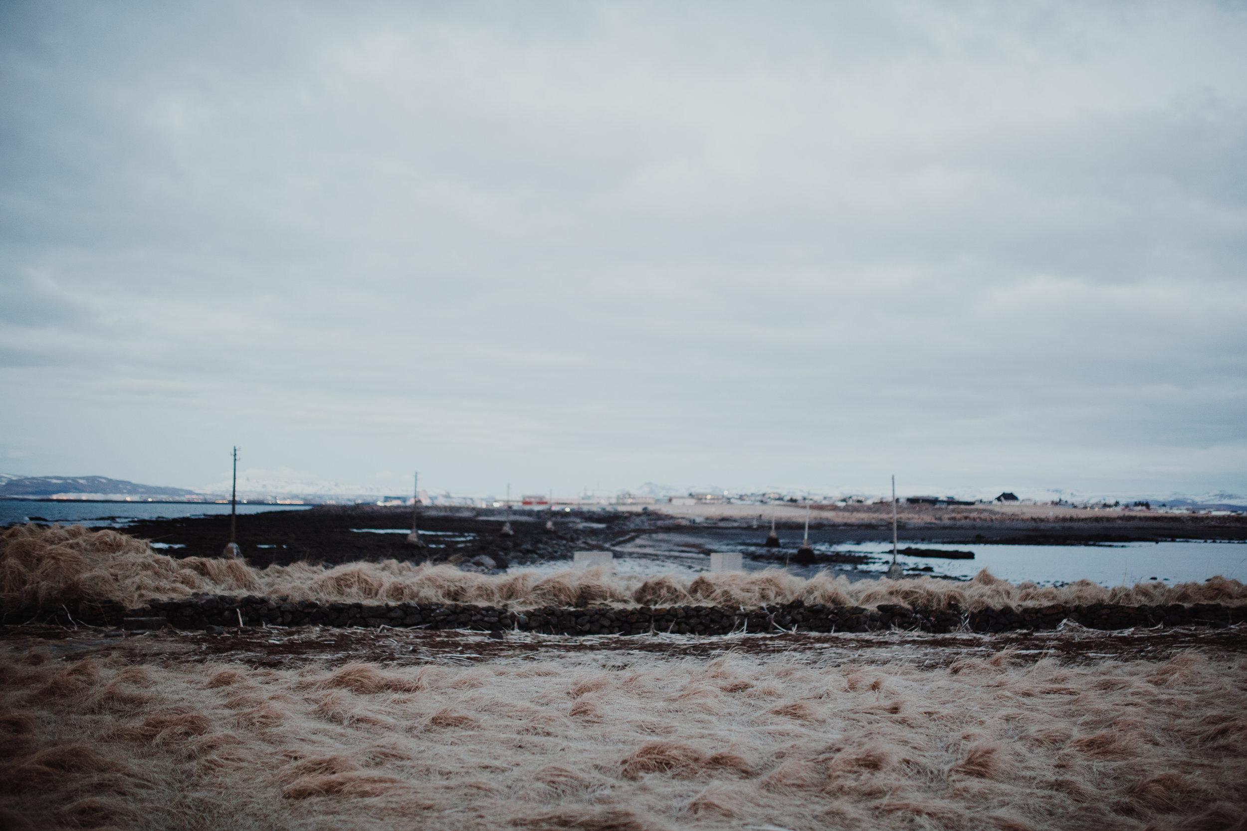 iceland-8757.jpg