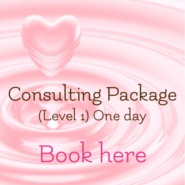 The Spirit of Spa Consulting Package Level 1