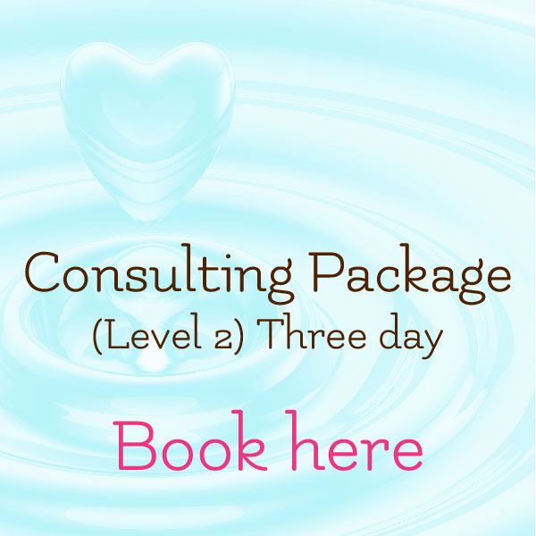 The Spirit of Spa Consulting Package Level 2