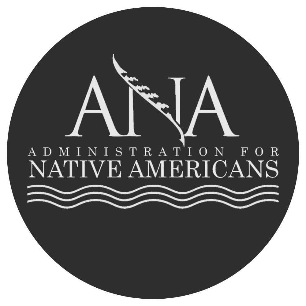 ANA main logo