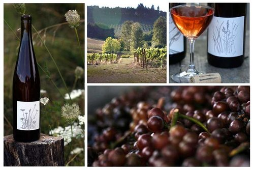 2016-Big-Table-Farm-Pinot-Gris.jpg