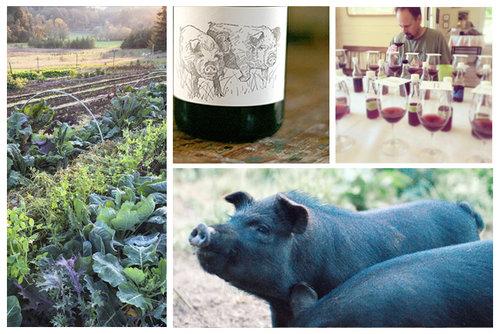 2015-Big-Table-Farm-Willamette-Valley-Pinot-Noir.jpg
