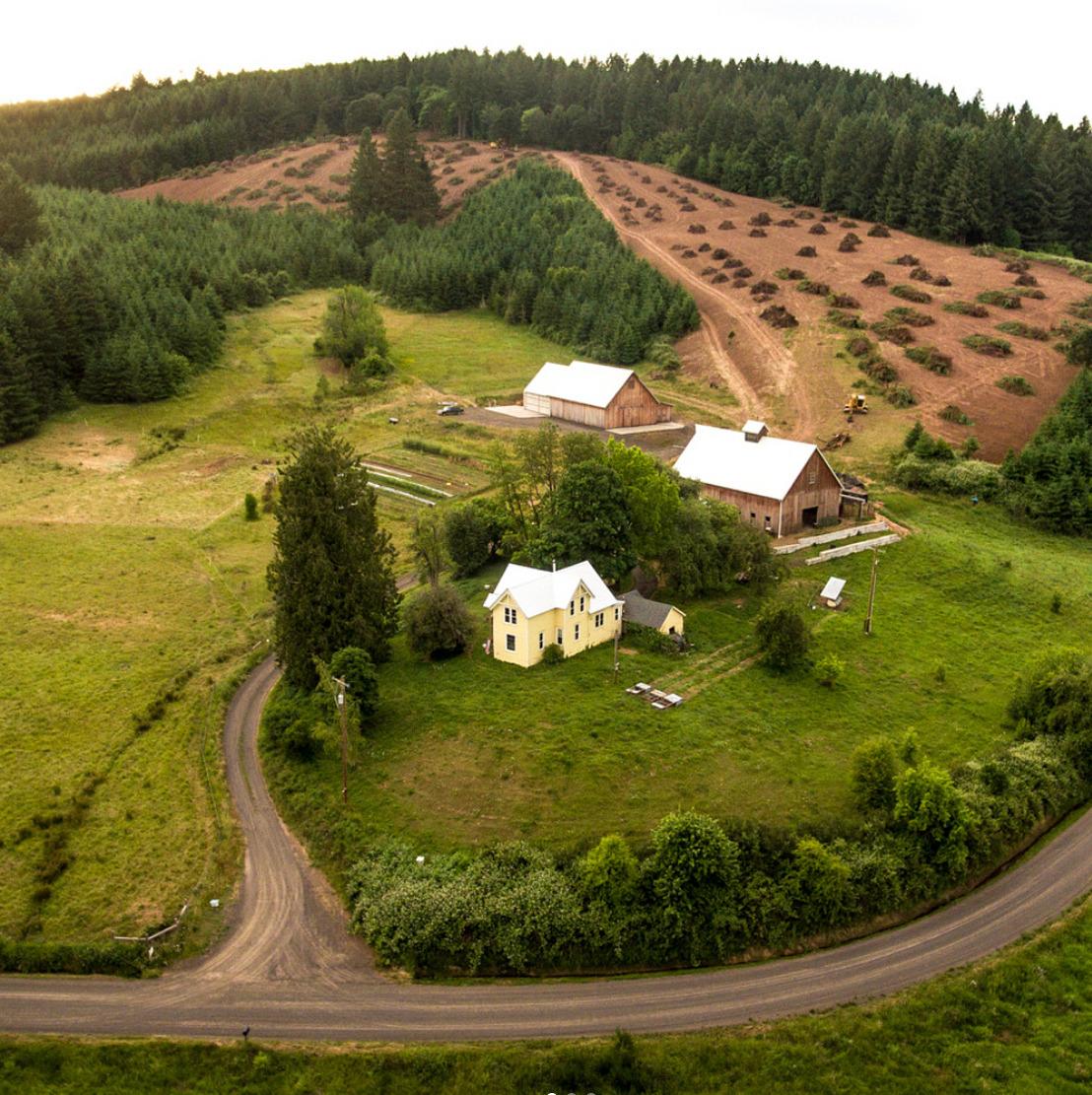 Screenshot_2018-08-20 Clare Carver - Big Table Farm ( bigtablefarm) • Instagram photos and videos(8).jpg