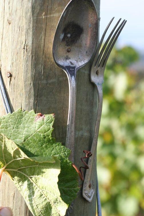fork_spoon.jpg