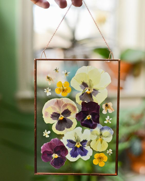 Pressed Pansies in Gold Frame.  Photo from ravishinginplaid.net