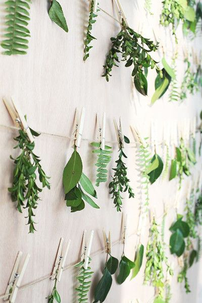 Hanging Foliage with Clothespin.  Photo from  lonny.com .