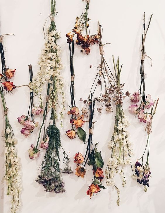 Hanging Dried Flowers.  Photo from creativemarket.com.