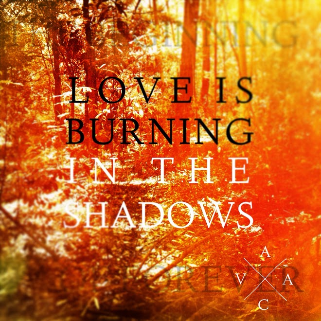 19 Love Is Burning In The Shadows.JPG