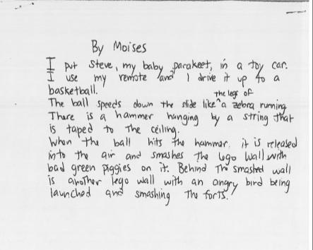 Rube Goldberg Poem by Moises