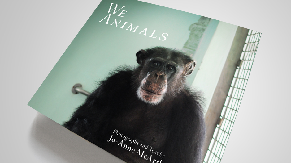 we_animals_01.jpg