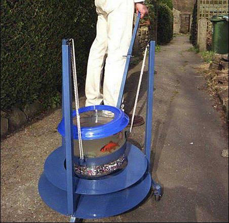 Goldfish Walker.jpg