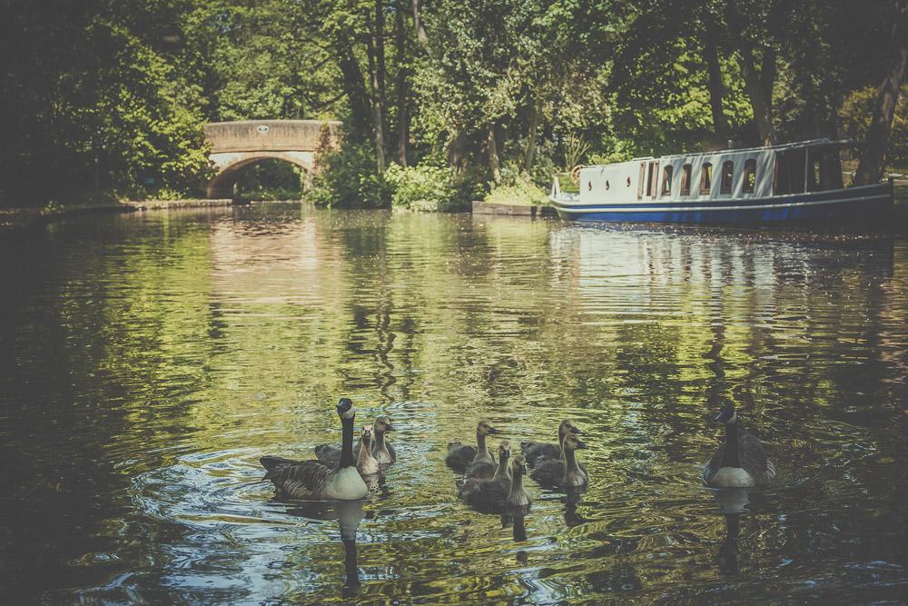 basingstoke-canal-hampshire-wedding-photographer-5.jpg