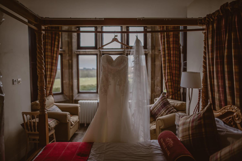 Pronovias Wedding Veil and Dress