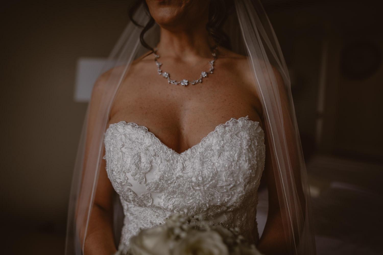 Pronovias Bridal dress Photo