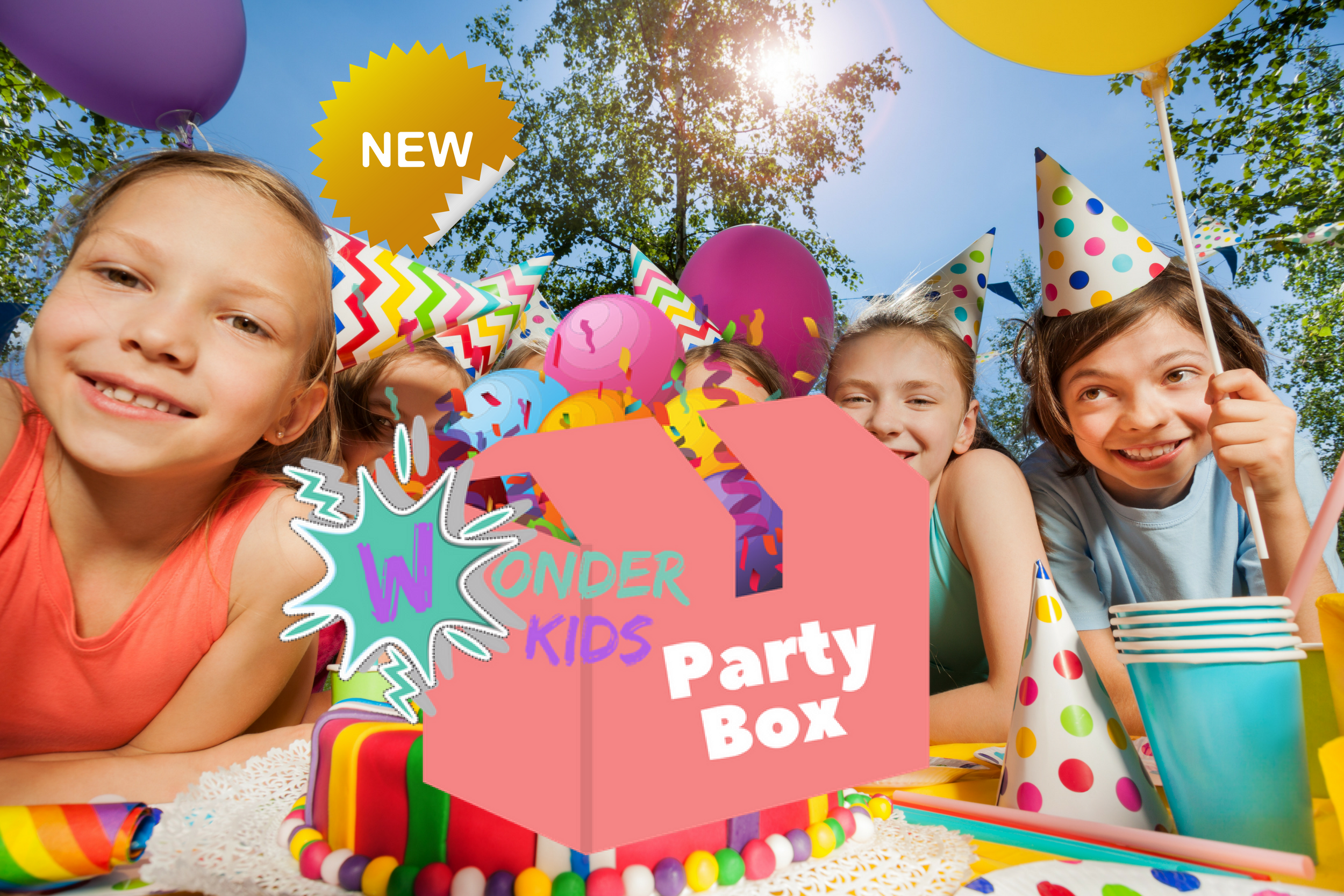 Our Range of Party Kits