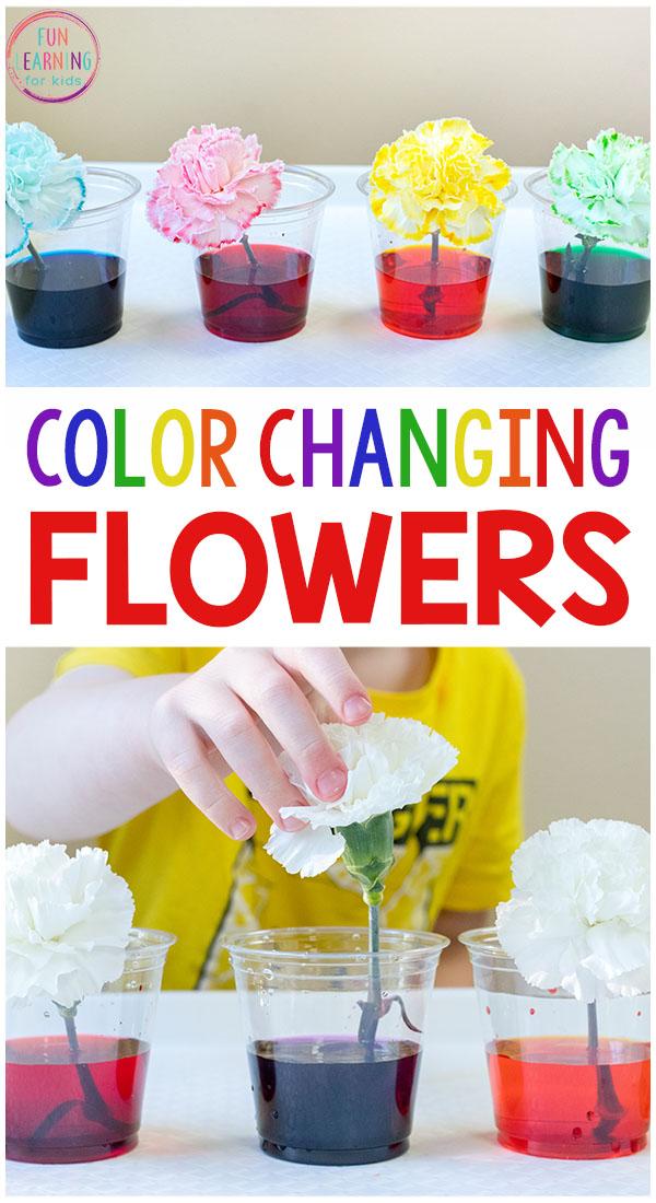 Science of flowers from Wonder Kids