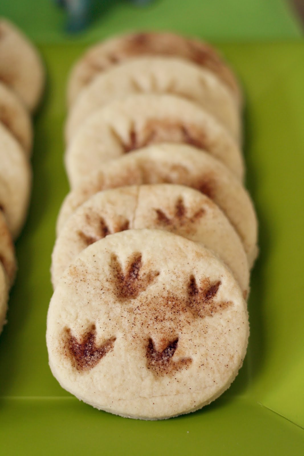 Fossil Print Cookies