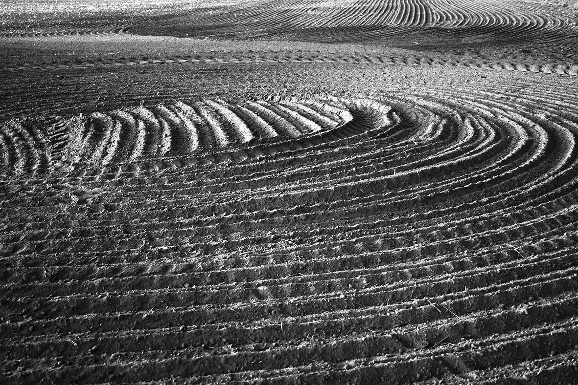 004_Schatten_2009.jpg