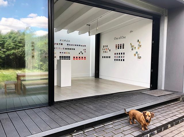 OPEN! 180 original Polaroid works by 27 exceptional artists. Grab an original art work for only £50! Show in support of 'Children & the Arts'. 163 gallery will be open from 10-5pm today and tomorrow, joining in with #dulwichfestival #peckham24 and #londonphoto. You can also meet Woody! Full show details via link. @julie.bentley.163 #afterpolaroid #oneofone #polaroid #photolondon #peckham24 #dulwichfestival #artsale #photography #painting #sculpture #installation #spraypaint #collage #ceramics #affordable #affordableart #analogue #newart #artistsoninstagram #dogsofinstagram #hernehill