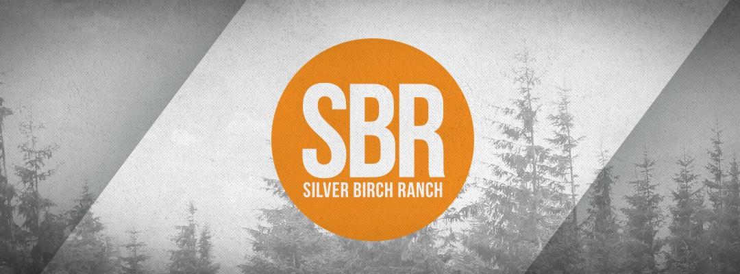 SBR image.jpg
