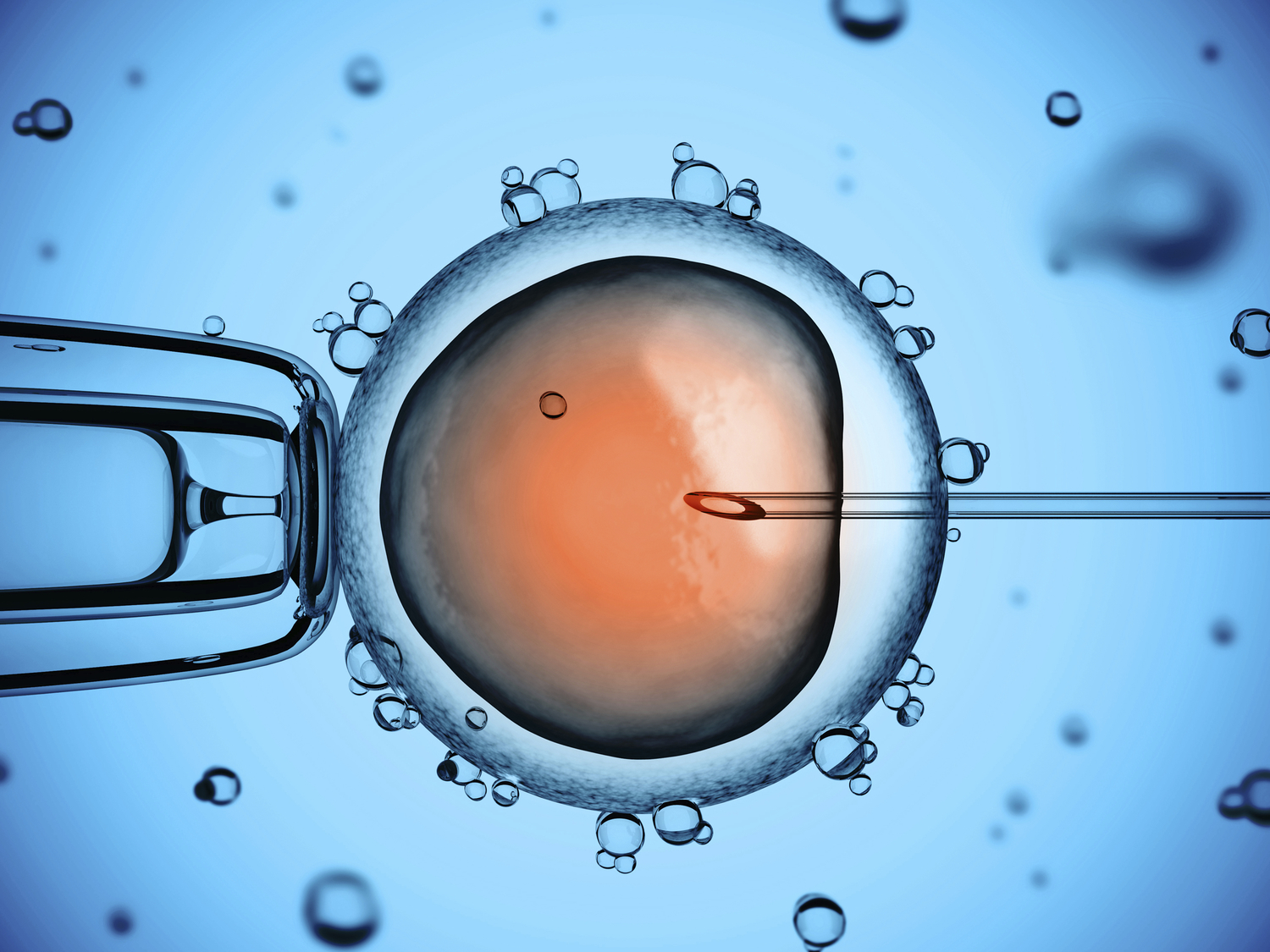 Upto a third of couples who failed to get pregnant with IVF may get pregnant on their own.