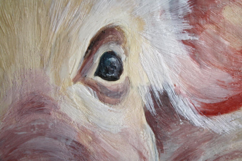 Stella - Detail