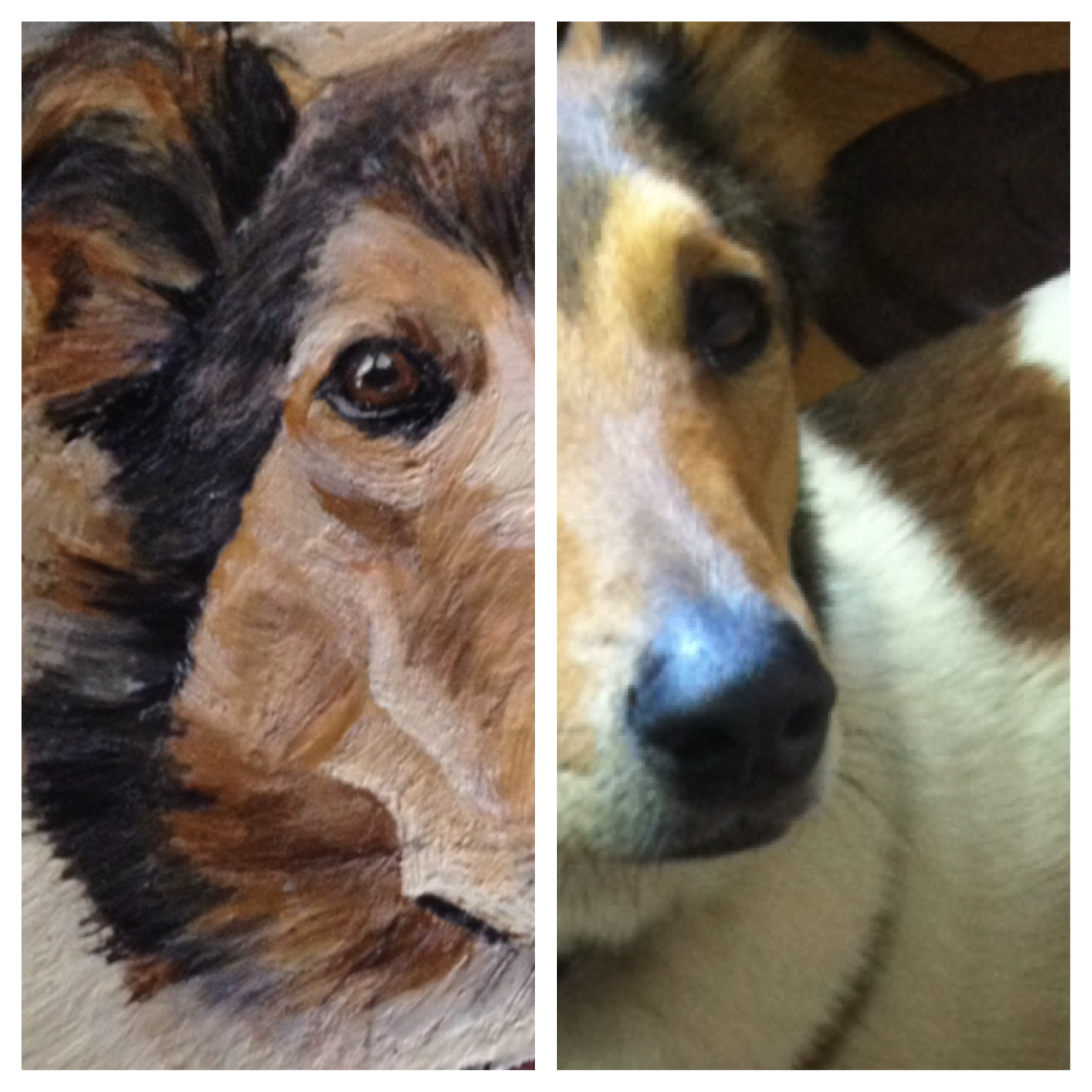 Pic stitch of reference photo and portrait