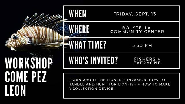 Don't forget, tonight is the night ! Free #lionfish workshop for fishers and anyone interested in learning more about this invasive predator ! Join us at the Community Center in  bo. Stella in Rincon at 5:30pm . Learn about the invasion, how to handle lionfish, and how to make your own collection device from everyday materials! Link to FB event with details is in our bio! #letsdosomescience #diving #fishing #spearfishing #apnea