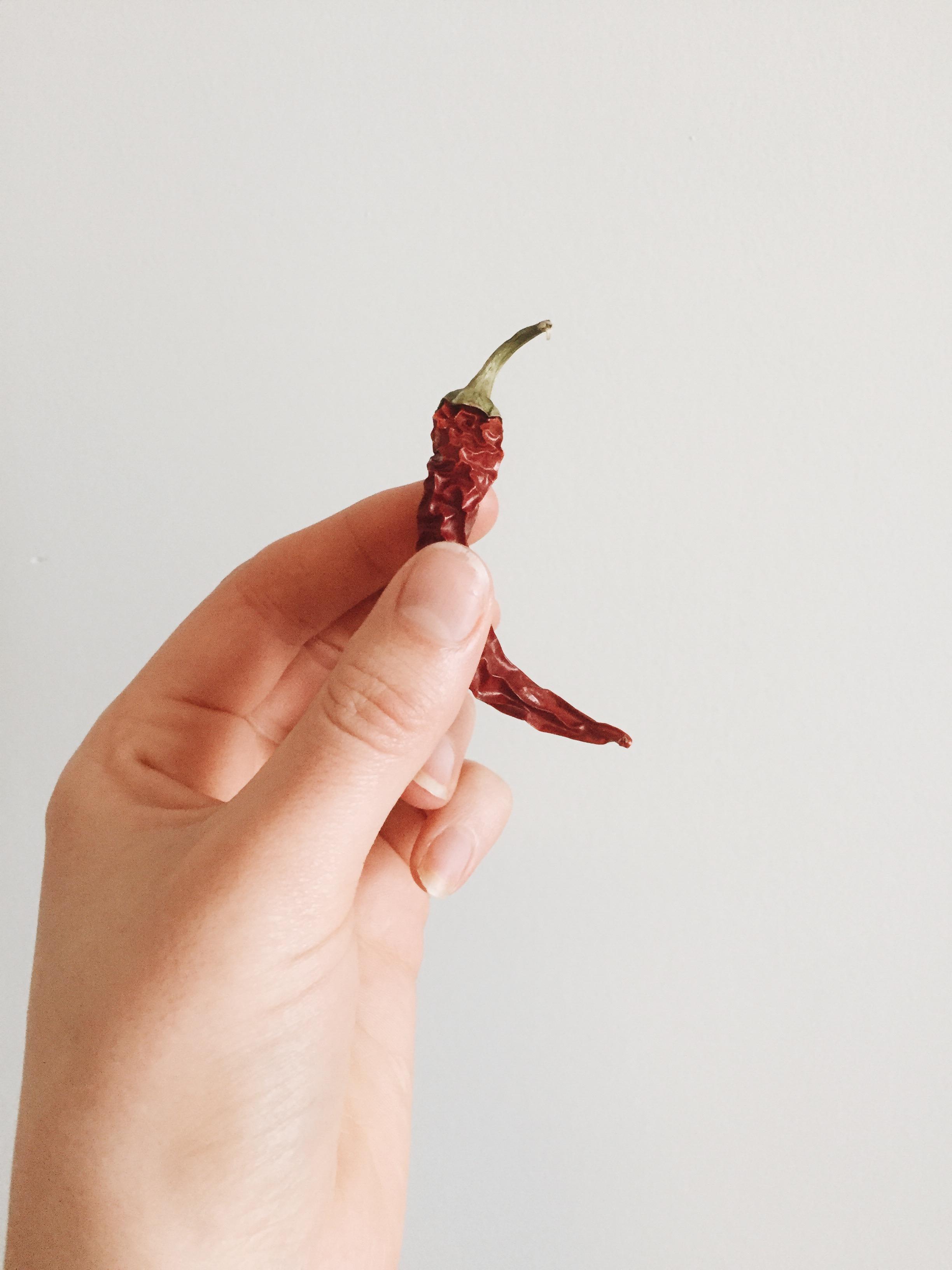 dried-chilli.jpg