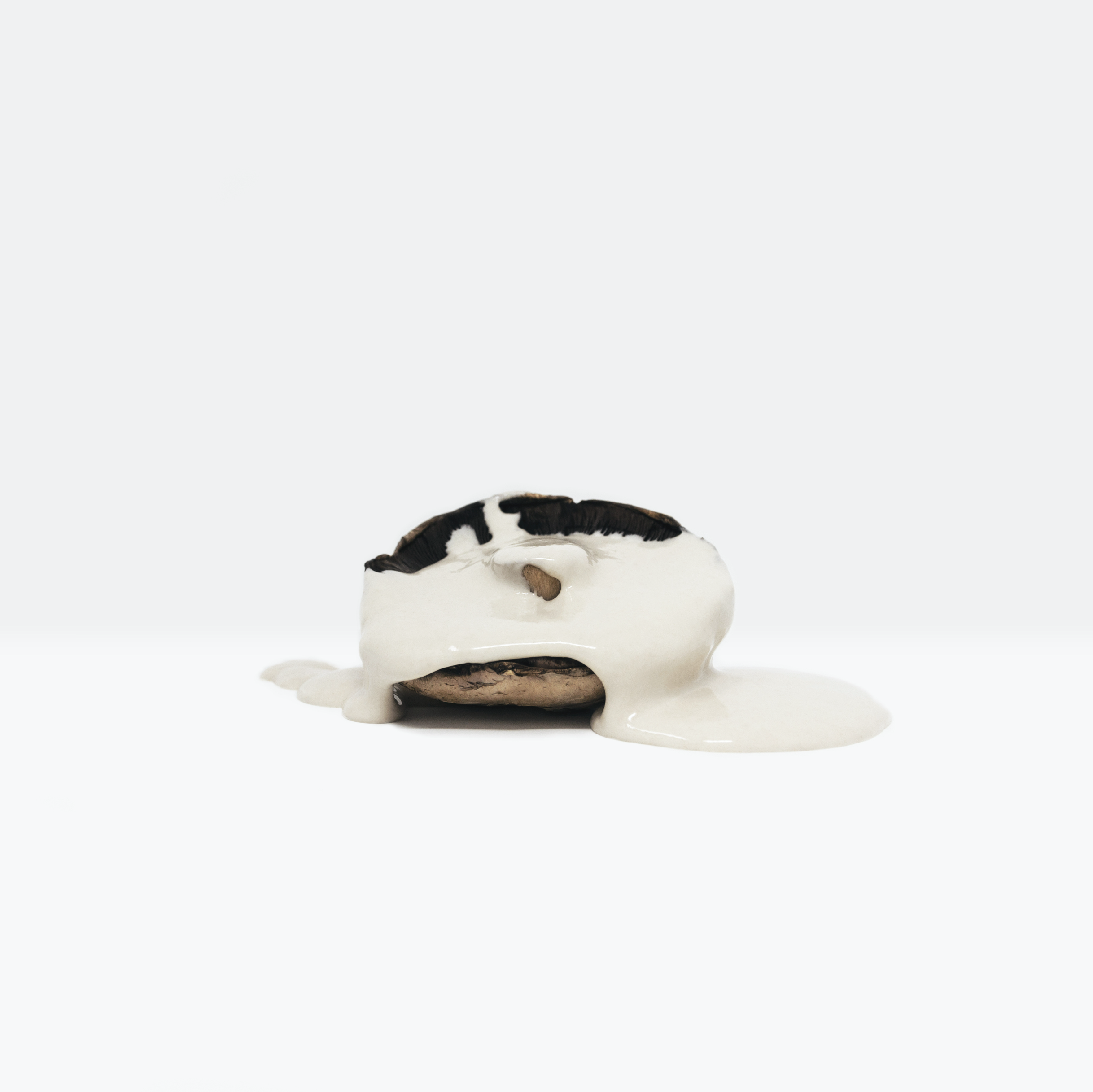 Minimalist, still life photograph of a mushroom covered in a paint-like substance highlighting the value of food, evoking the crucial reflection of the Global Food Crisis