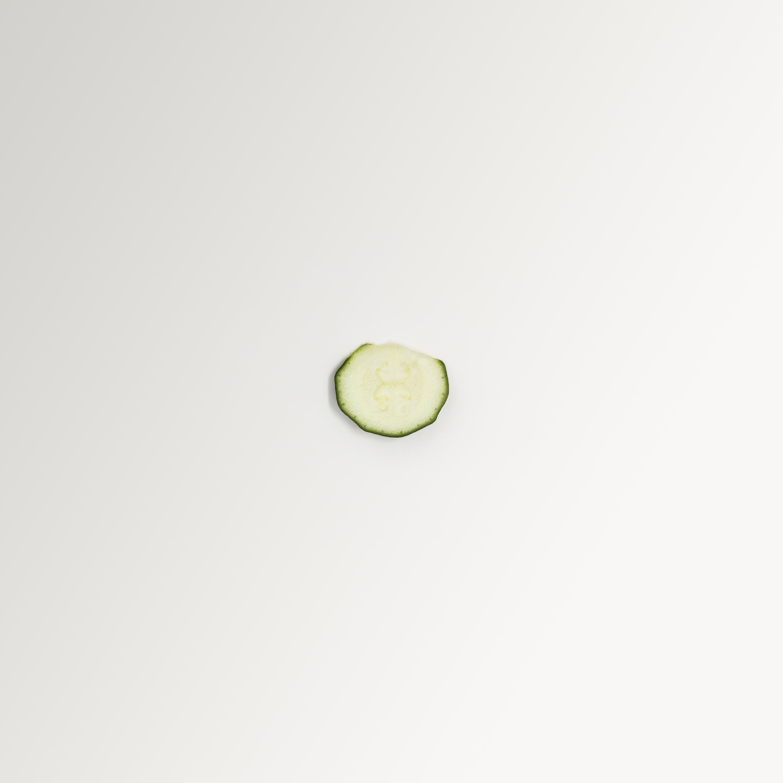 A simple, minimalist, contemporary, fine art photograph of a slice of cucumber