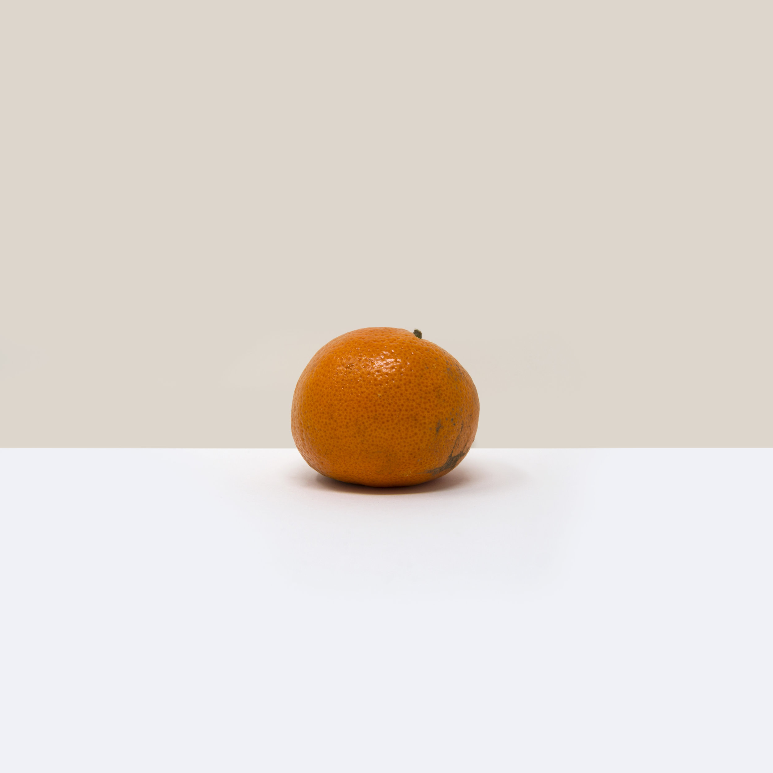 A simple, minimalist, contemporary, fine art photograph of a manderin