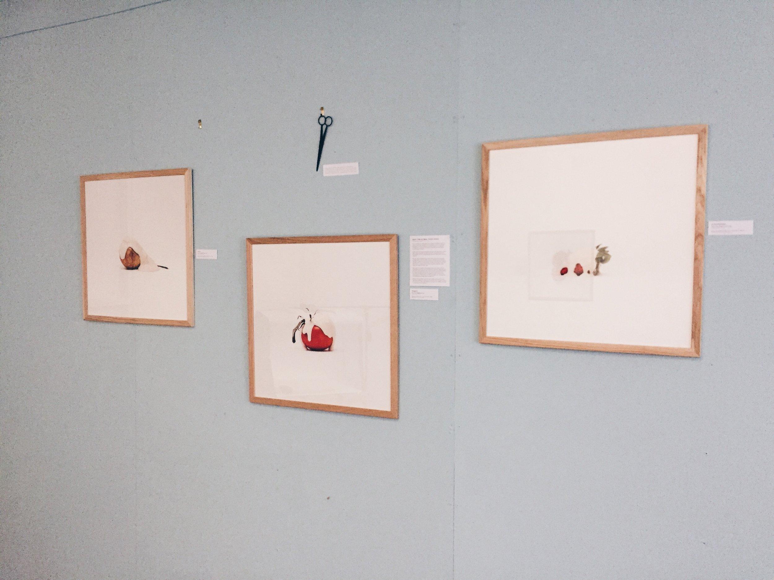 framed-artowrks-charlotte-fosdike.jpg