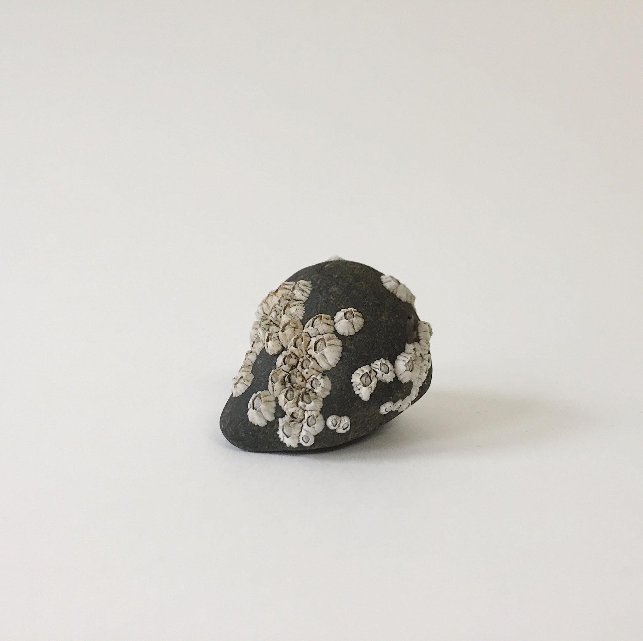 little-beach-stone.jpg