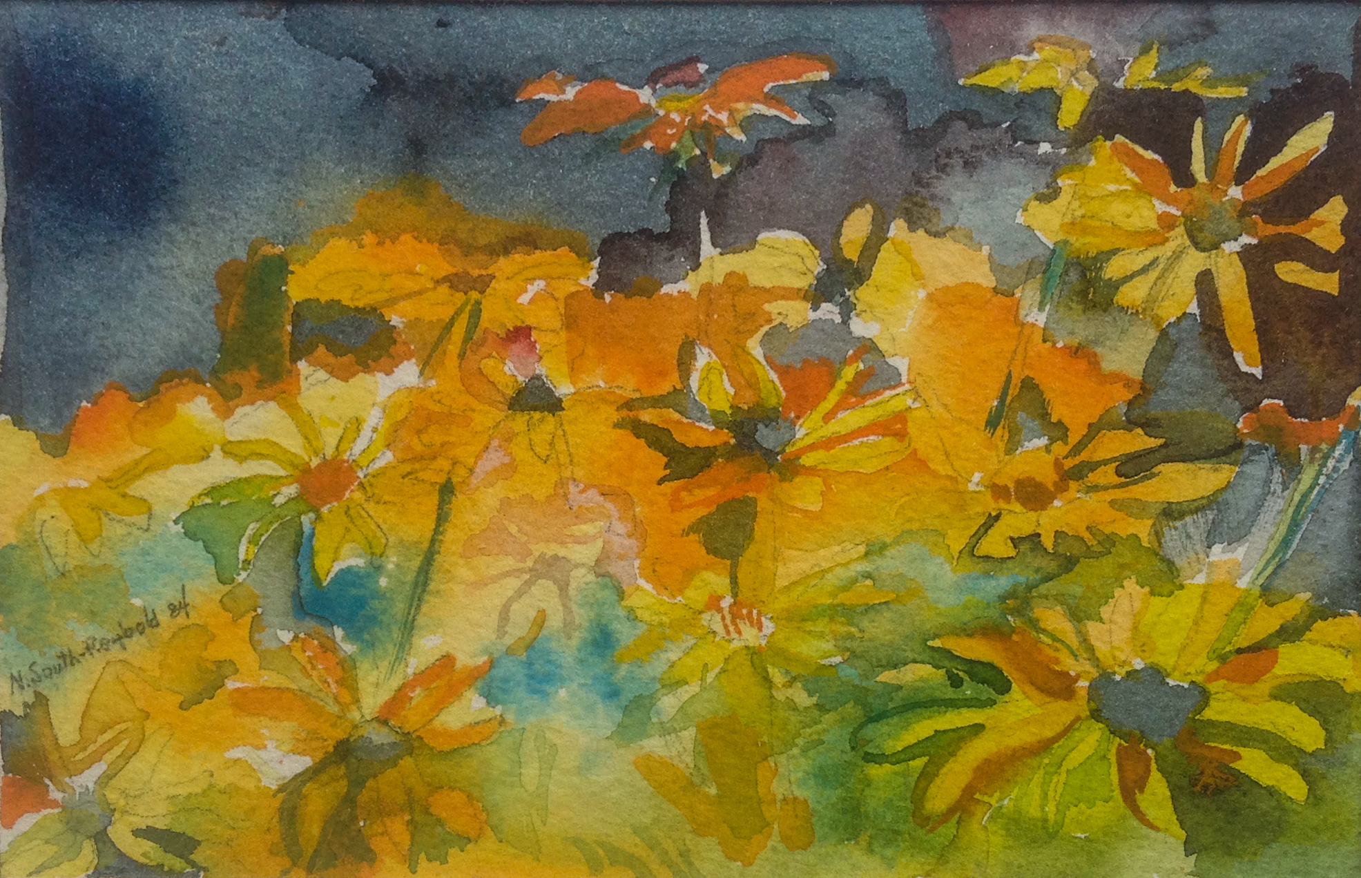 "Blackeyed Susan - 4"" x 6"" - Collection of Bill Reybold"