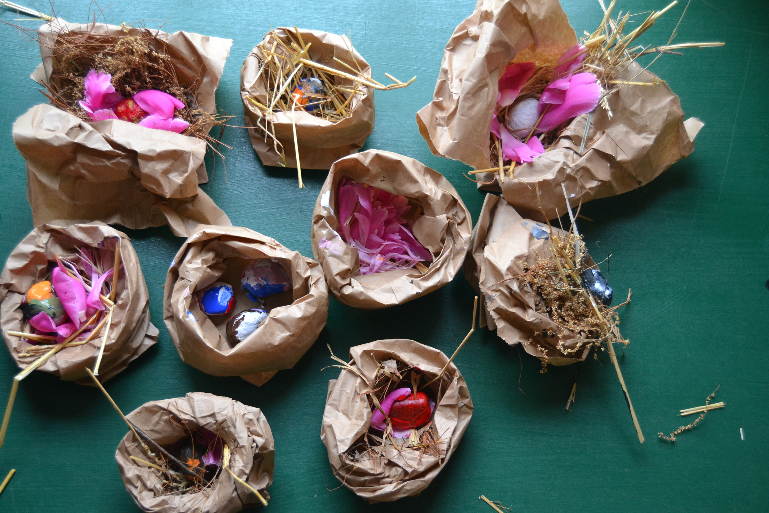 Some of the birds nests made in the greenhouse on Sunday