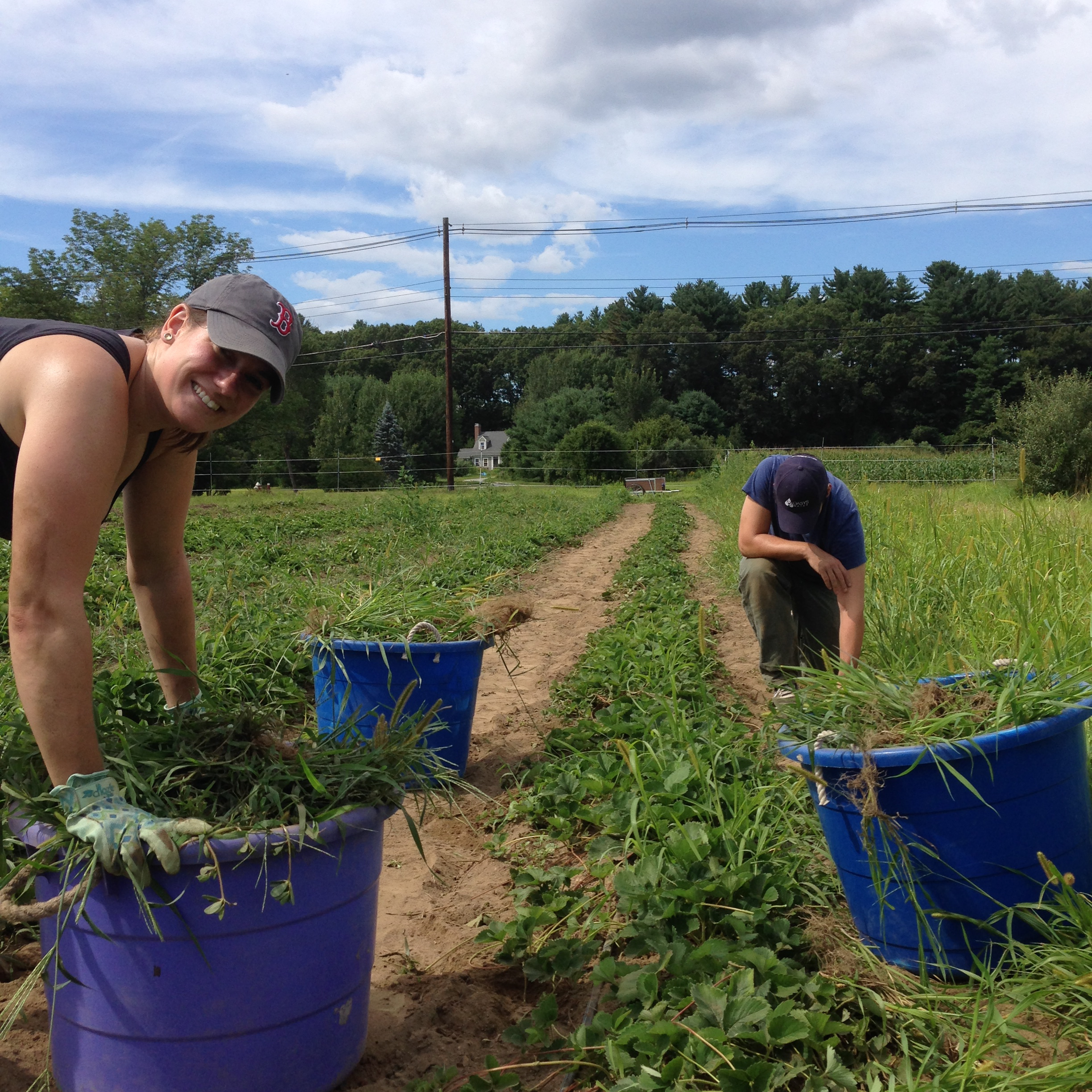 Family members took some time to help out on the farm Saturday.