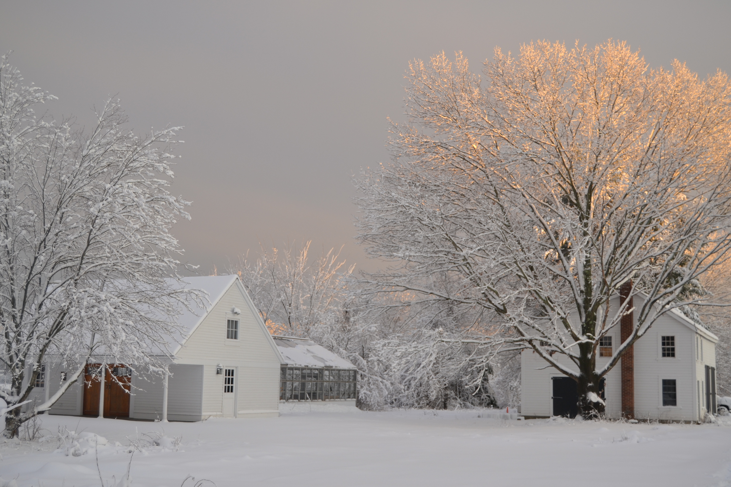 After last Friday's snow storm.