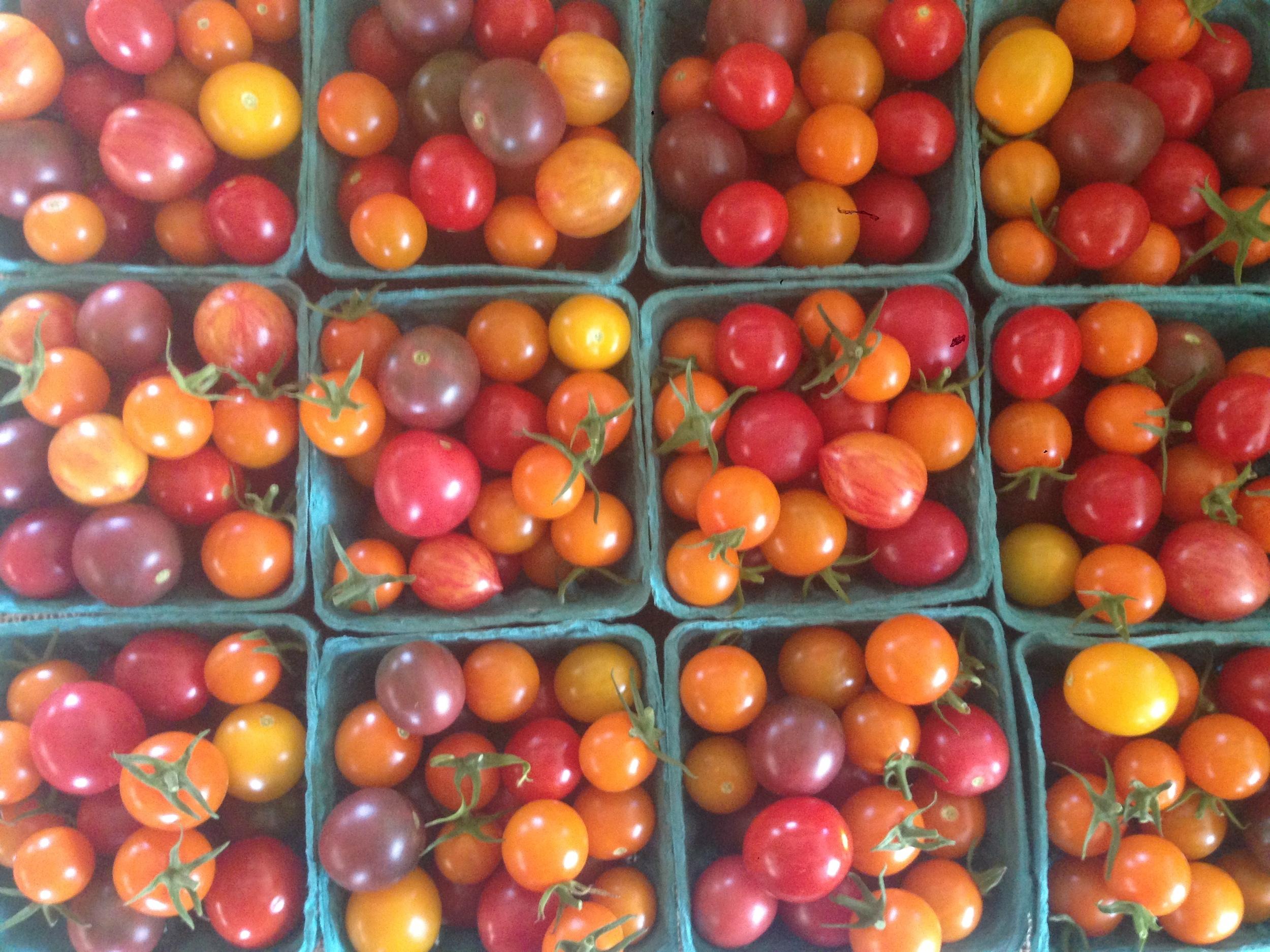 Rainbow of cherry tomatoes!