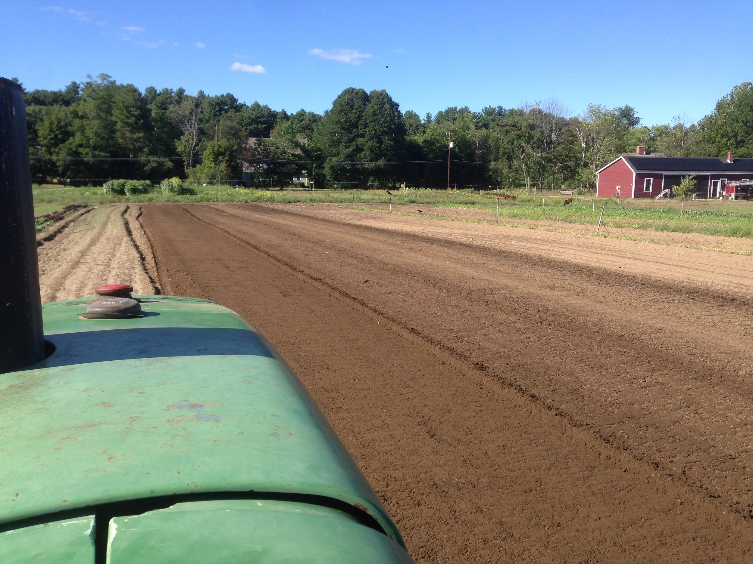 Making beds for seeding fall greens and planting spinach this week
