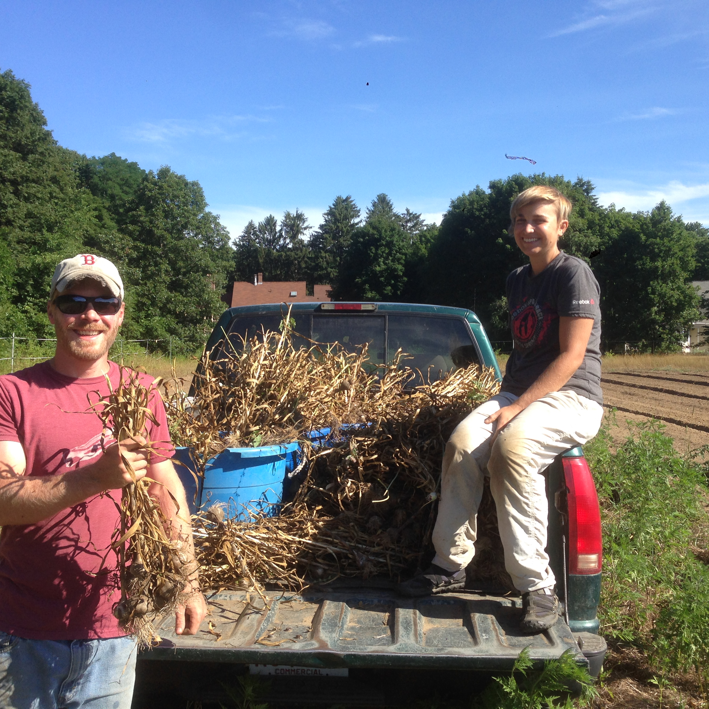 Ethan and Wyatt bringing in the last of the garlic harvest this July.