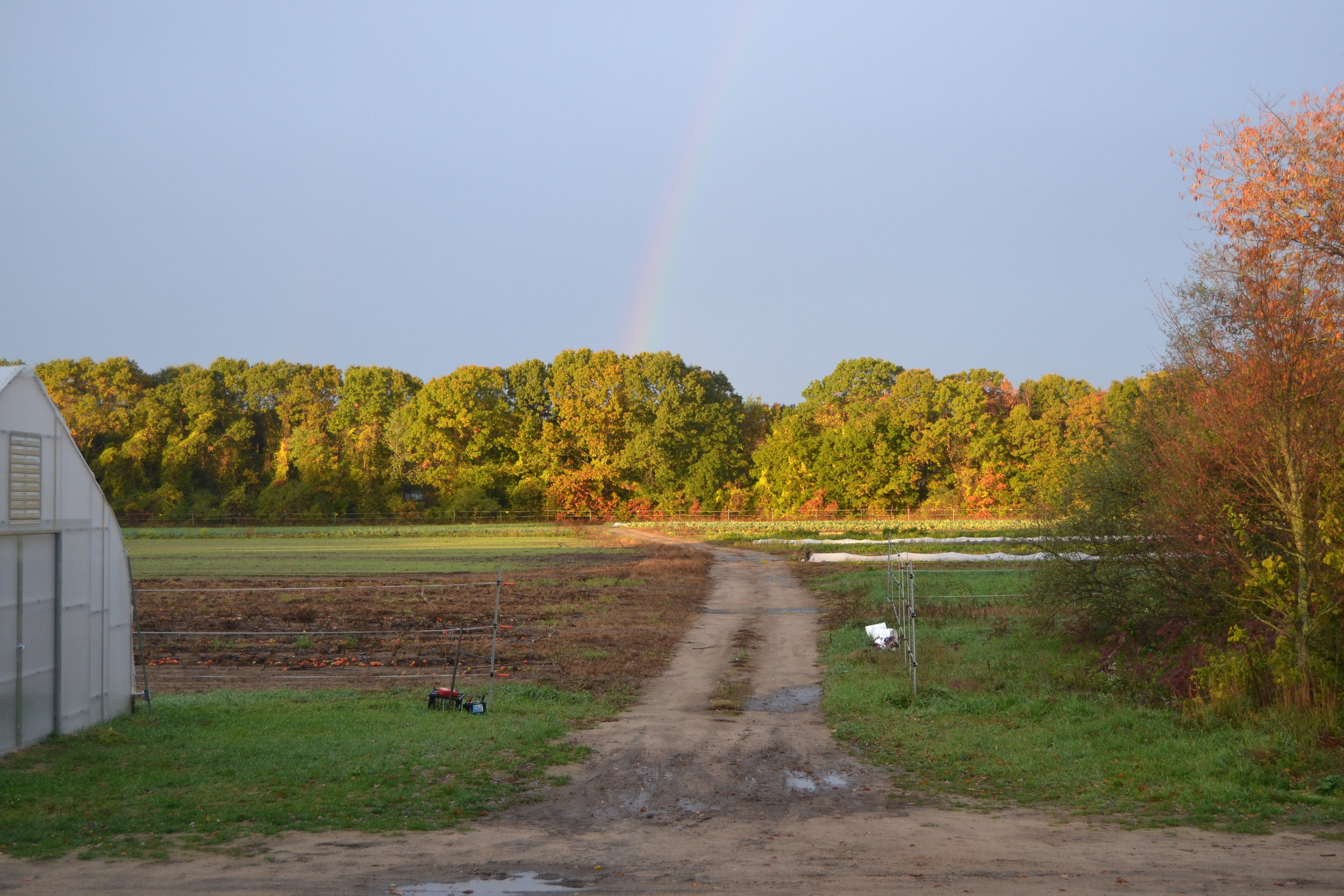 Morning rainbow on our last store day of the season.