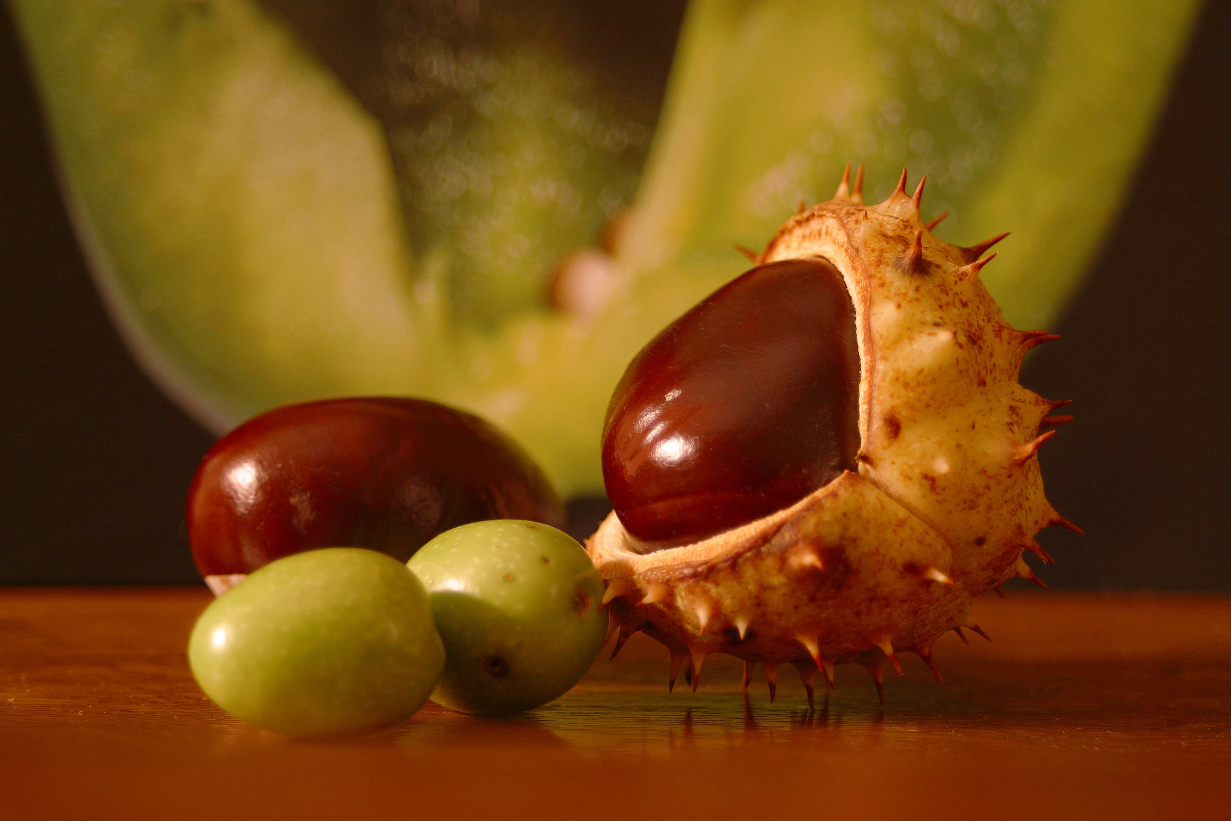 chestnuts and olives.jpg